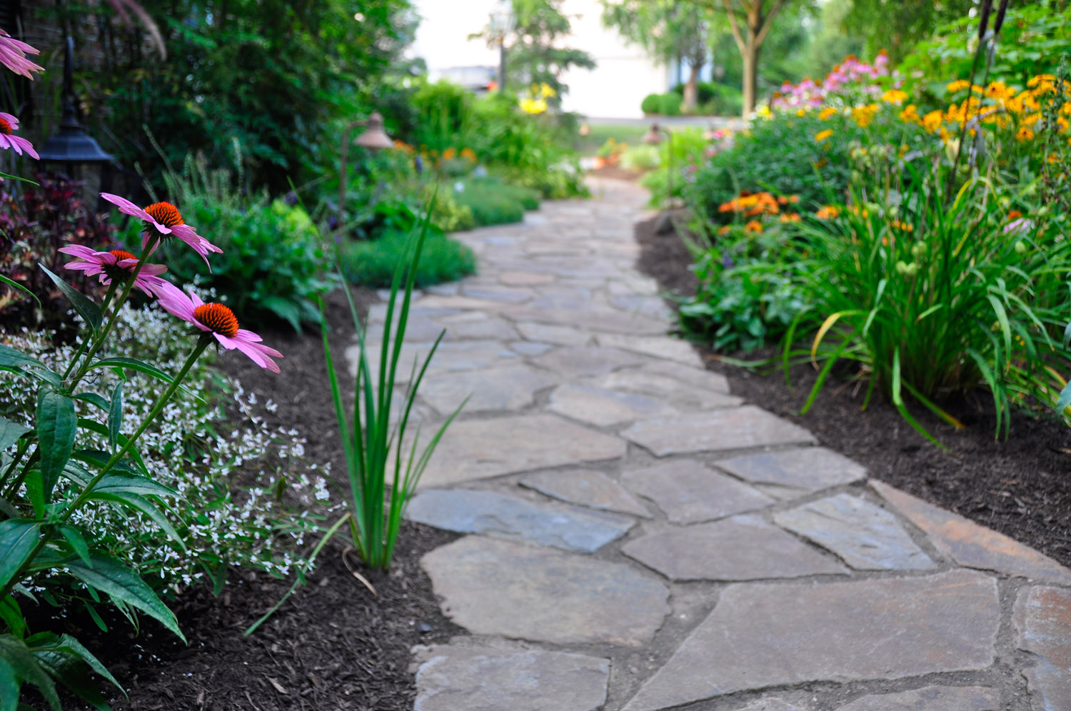 Ct landscaping construction company greenscapes for Landscape design